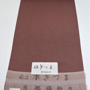 綿さつま/万筋(茶紫)